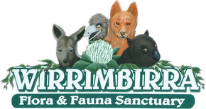 Wirrimbirra Sanctuary - Winery Find