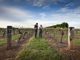 Coonawarra Wineries Walking Trail - Winery Find