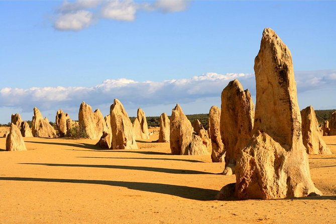 Pinnacles and Yanchep National Park Day Trip from Perth Including Lobster Shack Lunch and Sandboarding - Winery Find