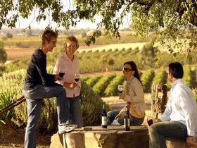 Barossa Valley Tours - Winery Find