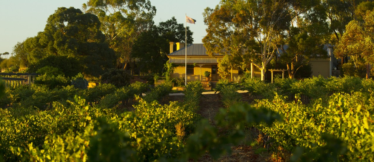 Greenock Creek Vineyard And Cellars