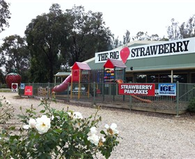 The Big Strawberry - Winery Find