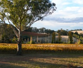 Bloodwood Estate - Winery Find