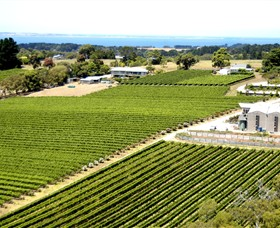 Paringa Estate Winery and Restaurant - Winery Find