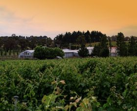 St Maur Wines - Winery Find
