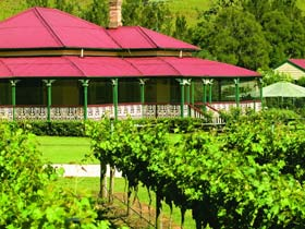 O'Reilly's Canungra Valley Vineyards - Winery Find