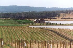 Tamar Ridge Wines