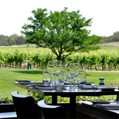 Terrace Restaurant @ All Saints Estate Winery