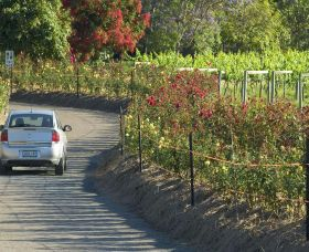 Cassegrain Wines - Winery Find